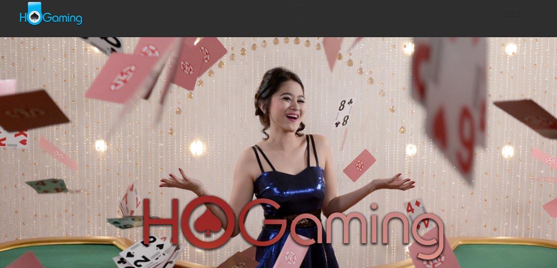ホーゲミンング HoGaming